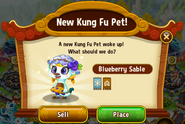 New KFP - Blueberry Sable