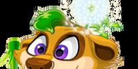 Dandelion Meerkat