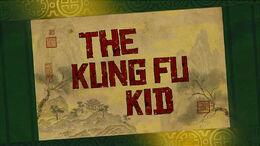 The-kung-fu-kid