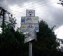 Żółty szlak rowerowy (Buchałowice)