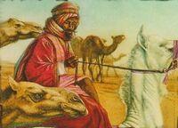 Al-Balah