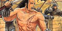 The Berserker Rage
