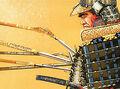 Armor of Sun Tao 2.jpg