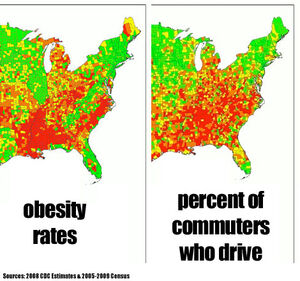 Obesity-and-driving1