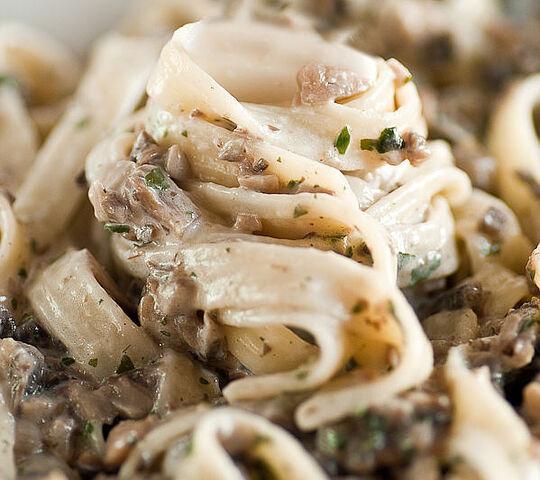 File:Pasta with creamy mushroom sauce.jpg