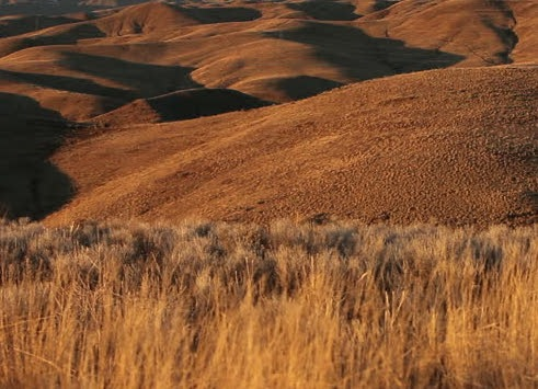 File:Hills.jpg