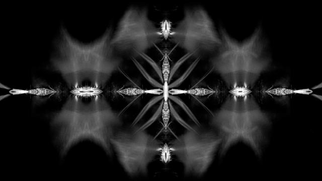 File:BadRomance-Interlude-SHOWstudio-3.png