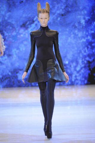 File:Alexander McQueen Spring 2010 RTW Longsleeve Black Dress.jpg