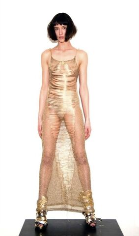 File:Craig Lawrence - Fall 2010 - Gold Lace dress.jpg