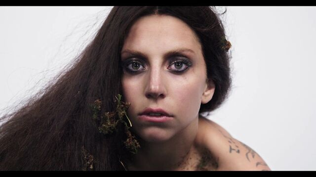 File:Inez and Vinoodh ARTPOP Film 003.jpg