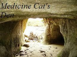 Medicine cats den
