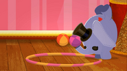 Elephant tries to impress Peanut
