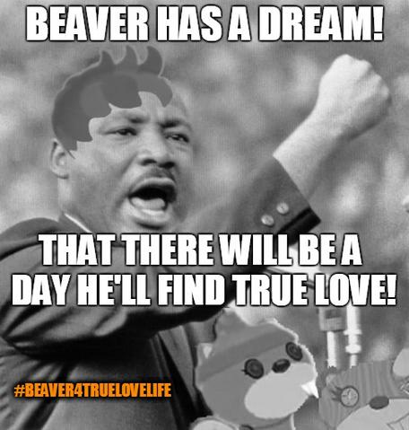 File:Beaver's Dream Beaver4TrueLoveLife.png