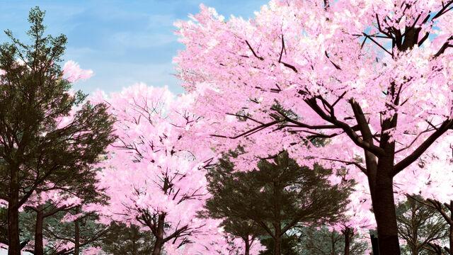 File:Bg24200春祭り 森.jpg