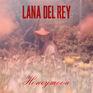 Honeymoon Single Cover