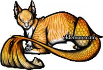 Cat-fish Sea Servals5