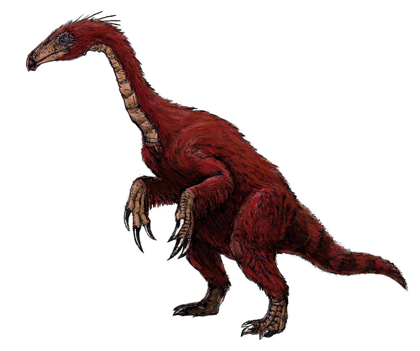 File:Segnosaurus.jpg