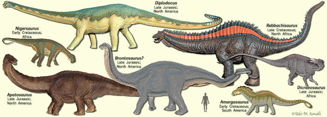 File:SauropodModels2.jpg