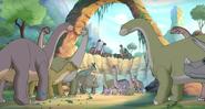 Unknown Sauropods