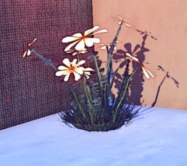 Large Bloodtear Plant prop placed