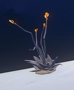 Dark Desert Succulent with Butterflies prop placed