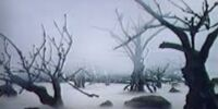 Mist Marsh