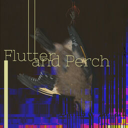 Flutter and Perch cover