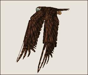File:Eagle 3.jpg