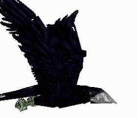 File:Crow 4.jpg