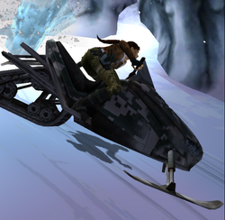 Relic Run Snowmobile