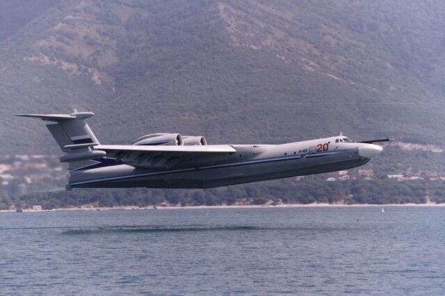 File:Albatross 4.jpg