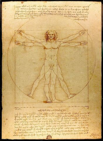 File:800px-Da Vinci Vitruve Luc Viatour.jpg