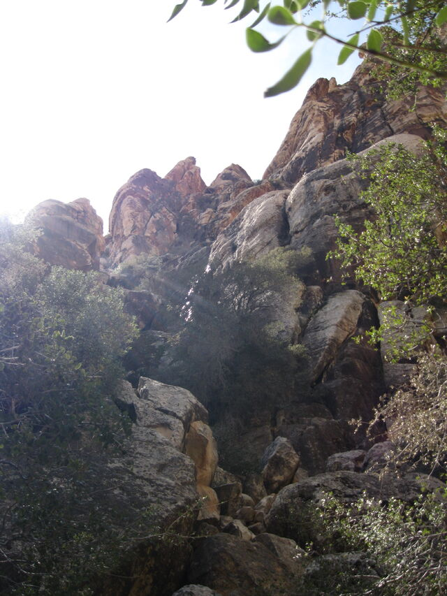 File:Willow Springs Hike.jpg