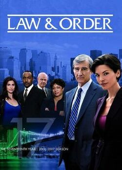 Law and Order S17 (DVD)
