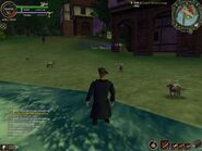Screenshot 2013-09-07 14-07-19