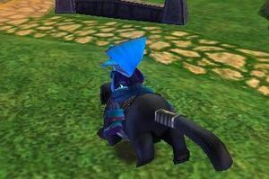 Blaine Riding his pet panther