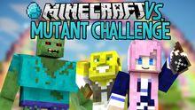 Modded Minecraft VS 1