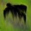 RoznosicielCiast Very Deadly Curse