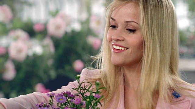 File:Legally Blonde 2.jpg