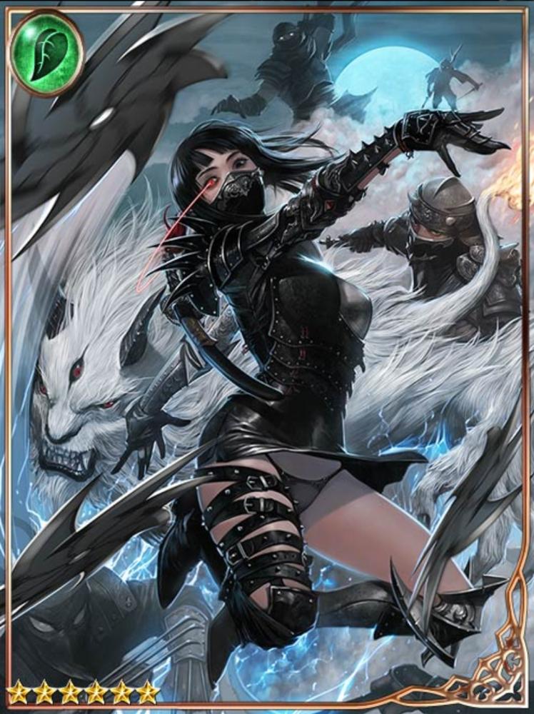 Assassin Gleaming Moon Shirayuki Legend Of The