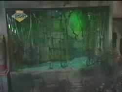 S1Swamp