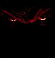 Freddy in the dark