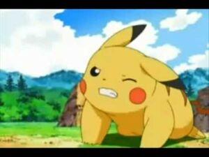 Pikachu strain