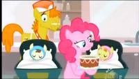 Pinkie pie 31