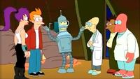 Bender 48