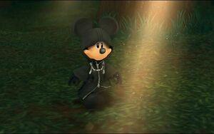 Mickey orginazation XIII
