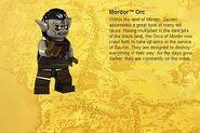 Mordor Orc Info