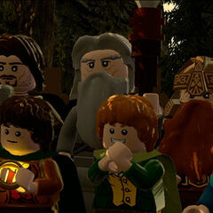 The entire Fellowship of the Ring