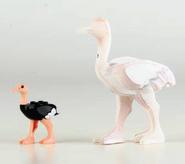Ostrich Proto