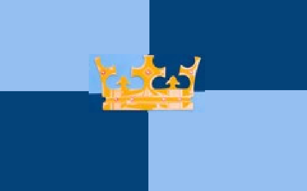 Crown knights flag